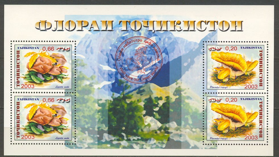 Грибы Таджикистана