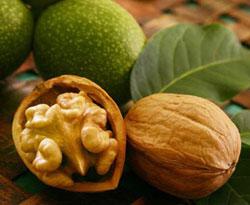 Ореховые растения Таджикистана